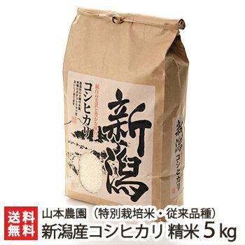 米・雑穀, 白米  5kg BL