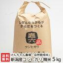 【30年度米】新潟産 自然栽培米コシヒカリ 5kg 選べる精...