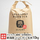【30年度米】新潟産 自然栽培米コシヒカリ 玄米 10kg ...