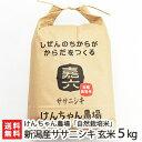 【令和元年度新米】新潟産 自然栽培米ササニシキ 玄米 5kg...