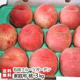 新潟産 桃 家庭用 3kg(9〜11玉)石田フルーツガーデン【訳あり】【もも/モモ/フルーツ】【送料無料】