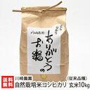 【令和元年度新米】新潟産 自然栽培米 従来品種コシヒカリ 玄...