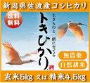 【無農薬】【コシヒカリ】トキひかり!!玄米5Kg又は精米4.5Kg