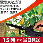 パオック(PAOCK)電気のこぎりEAS-250【あす楽対応】【送料無料】【鋸のこぎりノコギリ切断切る木材プラスチックコード】