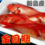 池太商店鮮魚はじめました伊豆諸島新島近海獲れたて地金目(キンメダイ)1匹(1キロ〜1.2キロ)送料込6,600円チルド発送