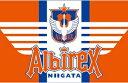 2017 Jリーグ カード チームエディション・メモラビリア アルビレックス新潟 BOX(送料無料)