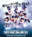 第4回ファンが選ぶ「東京ヤクルトスワローズ2017」トレーディングカード BOX(特典カード付)