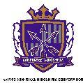 2012 Jリーグ カード チームエディション・メモラビリア サンフレッチェ広島 BOX
