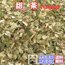 健康茶「甜茶」(てんちゃ)お試しパック35g【メール便送料無...
