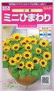 サカタのタネ ミニひまわり・小夏 【郵送対応】