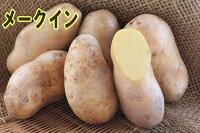 【ジャガイモ】ほっかいこがね1kg位入