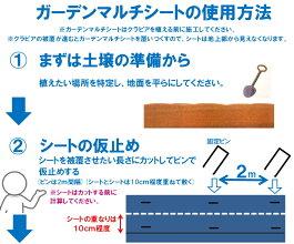 クラピア用マルチシートセット【1m×12m】(約12平米分)【お庭用】【送料無料(代金引換を除く】