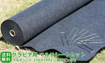 クラピア向けガーデンシートセット(約12平米分)【送料無料(代金引換を除く】