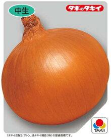 タキイ種苗タマネギアトン9cmポット苗2ポットセット【10月下旬発送分予約】