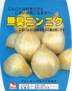 無臭ニンニク 約500g入(国産)