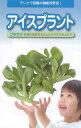 アイスプラント プチサラ コート種子 70粒入
