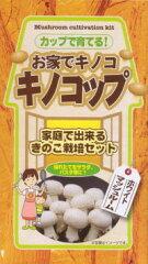キノコップ(ホワイトマッシュルーム)