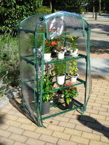 ミニ温室ガーデンハウスL(サイズ奥行95cm×幅95cm×高さ110cm)【送料無料】