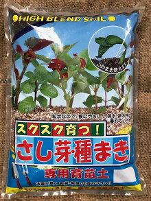 プロも使ってる挿し芽・種まきの土