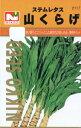 話題の野菜・山くらげ(やまくらげ、ヤマクラゲ、茎レタス)の種 約3mL【春】【秋】 【郵送対応】