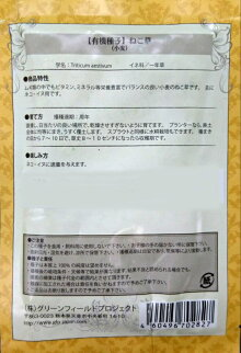 【有機種子】ねこ草(小麦)30g【郵送対応】