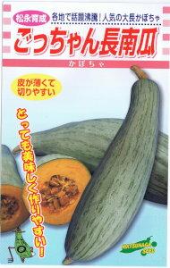 【種子】松永種苗 ごっちゃん長南瓜 約10粒 【郵送対応】