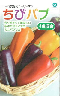 丸種カラーピーマンちびパプ4色混合各色3粒【郵送対応】