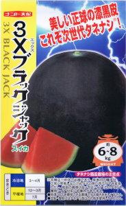 【種子】ナント種苗 スイカ 3Xブラックジャック 約8粒 【郵送対応】