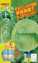 ナント種苗 極甘キャベツ サトウくん コート種子40粒 【郵送対応】