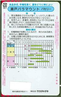 サカタのタネパセリー瀬戸パラマウント20ml【郵送対応】