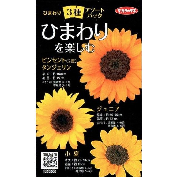 サカタのタネ ひまわり3種アソートパック【郵送対応】