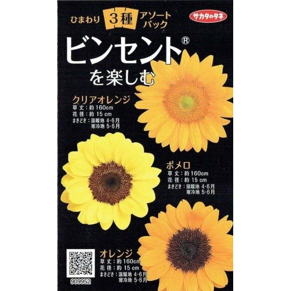 サカタのタネ ひまわり3種アソートパック(ビンセント)【郵送対応】