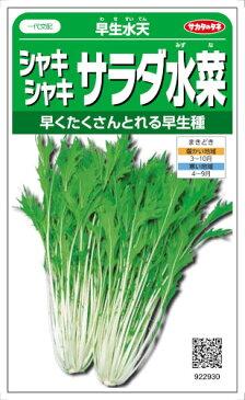 サカタのタネ 水菜 早生水天ミズナ 6ml【郵送対応】