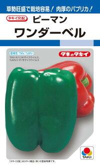タキイ種苗ピーマンワンダーベル約60粒【郵送対応】