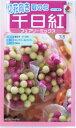 【種子】タキイ育成 千日紅 フェアリーミックス 0.5ml 【郵送対応】