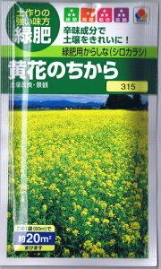 タキイ種苗 緑肥用からしな 黄花のちから 60ml 【郵送対応】