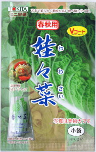 トキタ種苗 娃々菜(わわさい) 1g
