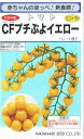 渡辺採種場ミニトマトCFプチぷよイエロー生種約100粒【郵送対応】