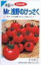 トマト・Mr.浅野のけっさく 約20粒