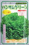 横浜植木 レタス・ハンサムグリーン Lコート種子 約100粒 【郵送対応】