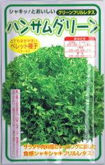 syu0007 - 晩白柚(ばんぺいゆ) / ハンサム