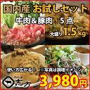 国内産 お試しセット 牛肉&豚(国内産)肉 5点セット 1....