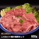 肉工房志方 こだわり6種の焼肉セット 600g (ロース・カルビ・なかおちカルビ・肩ロース・牛タン・バラ)