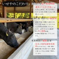 熊野牛 サーロインステーキ A4ランク A5ランク 250g×2枚 500g 【 送料無料 】 サーロイン 肉ギフト 国産 黒毛和牛 お歳暮 贈答 内祝 風呂敷 包装