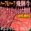●ついに!メガ盛りにハーフ&ハーフ 【送料無料】飛騨牛 カル...