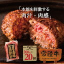 肉のイイジマ 常陸牛 ハンバーグ 200g×20個入り 送料