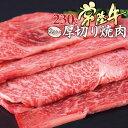 ホワイトデー 2021 ギフト プレゼント グルメ 肉 国産 黒毛和牛 焼肉 常陸牛 A5 ちょい厚切り 肩ロース 230g 焼肉用 焼き肉セット 肉 自宅用にも やきにく