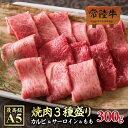 bbq 焼肉セット A5 黒毛和牛 常陸牛 カルビ サーロイン もも 300g 焼肉3種盛り合わせ バーベキュー セット 肉 自宅用 やきにく
