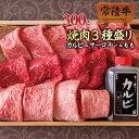 焼き肉セット ギフト 詰め合わせ A5 常陸牛 カルビ サーロイン もも 国産 ブランド牛 手造りタレ付き 木箱