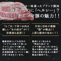 エゴマ脂がうまい♪普段と違う国産こま切れを!福島県産うつくしまエゴマ豚こま切れ250g(真空パック)×2パック【小間切れ】【細切れ】【ふくしまプライド】福島精肉店